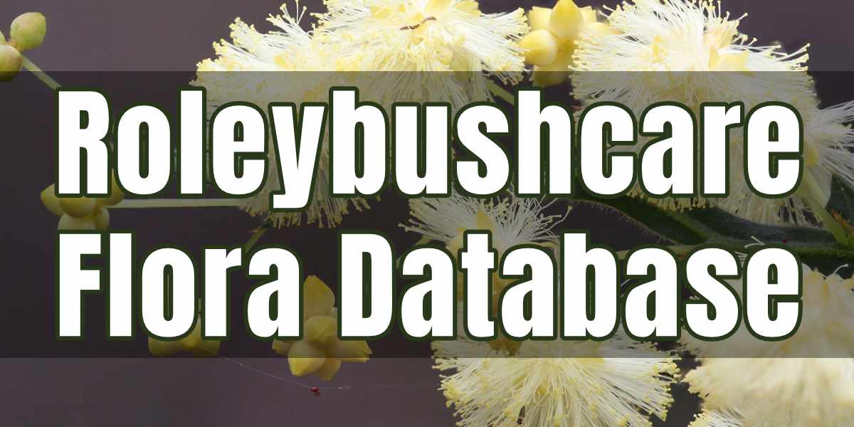 Roleybushcare Flora Database Banner