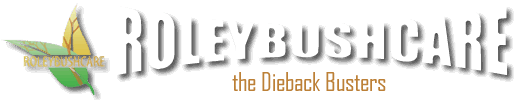 Roleybushcare Website logo